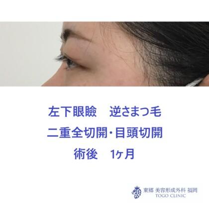web_43793